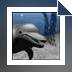 Download 3D Dolphins