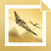 Download Blazing Angels : Secret Missions of WWII