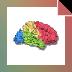 Download BrainVoyager QX