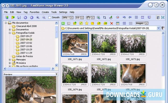Download FastStone Image Viewer for Windows 10/8/7 (Latest