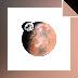 Download Mars 3D Space Tour screensaver
