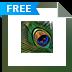 Download Nature Paintings Free Screensaver