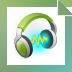 Download Wondershare Streaming Audio Recorder